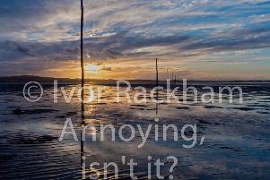 Wouldn't you prefer to see just the image instead of the annoying watermark?