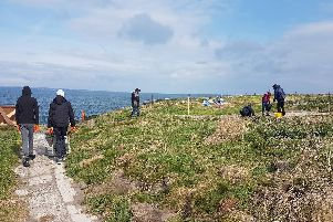 Coast Care Young Rangers at work on Coquet Island. Picture by Jane Smith.