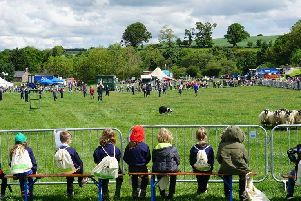 Overlooking the main ring at Children's Countryside Day.