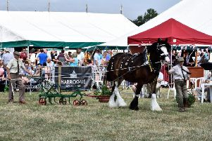 Fwd: Countdown is on to Tockwith Show