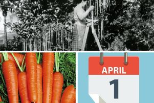 Today is April Fools Day... but what does it mean and why do we do it?