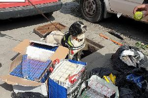 A police sniffer dog managed to find a haul of counterfeit cigarettes hidden under a drain cover in Pendle