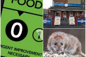 Rat droppings found in zero-rated eatery