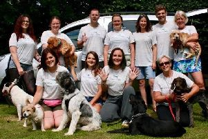 The DotDot Pet Care team have been nominated for an Animal Star Award.