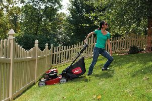 Time to mow the lawn