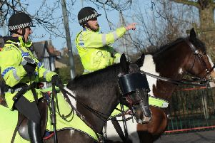 West Yorkshire Police are looking for a new police horse - and yours could be just the mount they are looking for.