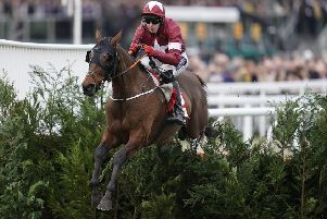 Loveable legend Tiger Roll on his way to an easy win at last month's Cheltenham Festival. (PHOTO BY: Alan Crowhurst/Getty Images)