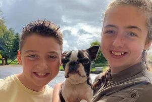 Murphy the Boston Terrier, who went missing for two weeks, is back safe in the arms of Thea and Dylan George.