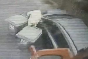 Impatient motorist almost hits council worker after driving around bin wagon in Hartlepool.