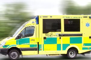 The North East Ambulance Service says it may have to extend the five-year lifespan of its vehicles if new ones are delayed by a no-deal Brexit.