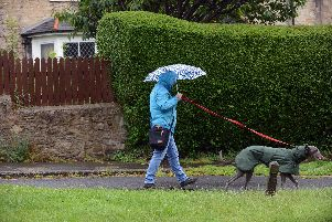 Braving the wet weather.
