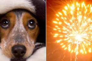 The fireworks have already started.