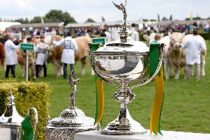The Great Yorkshire Show celebrates the very best of farming, food and the countryside (Photo: Yorkshire Agricultural Society)