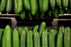 Naked cucumbers