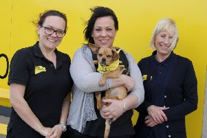 Title Hope: MP Paula Sherriff will team up with a Dogs Trust resident in the Westminster competition.