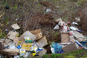Fly-tipping is one type of anti-social behaviour the council hopes to crack down on