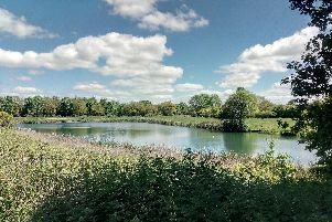 People are being urged to keep their dogs away from water sources which could contain potentially lethal blue-green algae