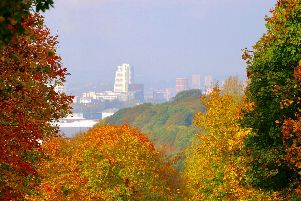 Autumn coloured trees at Temple Newsam looking towards the city centre.