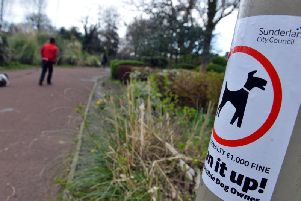 One dog fouling fine has been handed out in a year in Sunderland.