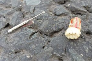 Hundreds of needles, sharp objects and loose teeth have been found scattered on the A6 in Forton this morning (Tuesday, May 14).