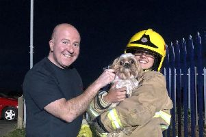 Tyne and Wear Fire and Rescue Service firefighters with the rescued dog.