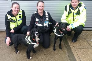 PC Sim, Rachael from Wagtails and Community Safety Officer Johnson with sniffer dogs Buster and Ted.