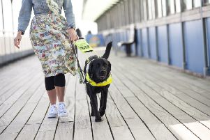Guide Dogs is calling for volunteers. Picture shows Angie Flake and Guide Dog Nick. 'Picture: Guide Dogs
