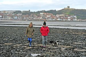 Viv Hemingway and Alison Murrell walk Jack through the seaweed on the South Bay in Scarborough.