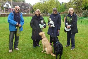 Some of the winners at the All Breeds Dog Training Club show.