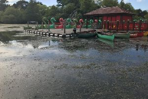 Work is underway to remove weeds from Peasholm Park's lake.
