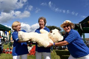 Having fun guessing the weight of the bear. From left: Janet Cliff, Lynne Jones, Andrea Adam
