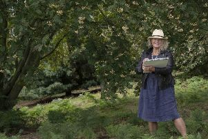 Lesley Seeger began her residency at the Yorkshire Arboretum in the autumn of 2018.