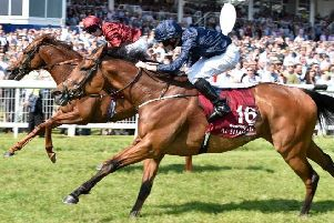 Rhododendron (number 16) pips Lightning Spear to win the Group One Al Shaqab Lockinge Stakes at Newbury on Saturday.