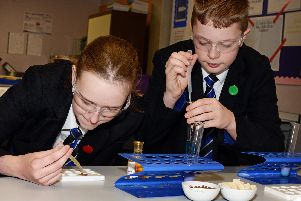 Charlotte Barnett and Adam Temperton, both 13, pictured during a Science class. Picture: NDFP-05-02-19-RossingtonAllSaints-4