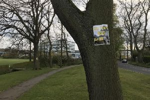Protest posters against the plan were put up on several trees along Lady Ediths Drive.