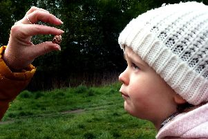 Sheffield and Rotherham Wildlife Trust BioBlitz on Wadsley Common: Bella Paynter (2) looks at a snail shell