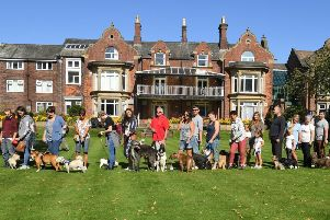 Participants in the Bark in the Park event gather at St Catherine's Park