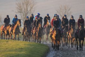 Racehorses exercising on the gallops in Lambourn, Berkshire on Tuesday (Picture: Steve Parsons/PA Wire).