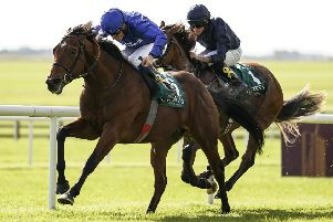 Anthony Van Dyck, seen here chasing home Quorto in a big 2yo race last season, is our expert's fancy for Saturday's Investec Derby. (PHOTO BY: Alan Crowhurst/Getty Images).