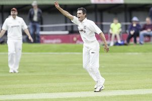 New Zealander Brad Schmulian claimed 7-33 and then made 64 as Woodlands defeated Cleckheaton in the Bradford Premier League last Saturday.