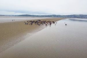 Aerial photo of the Cross Bay Walk (Pic credit Idroneit)