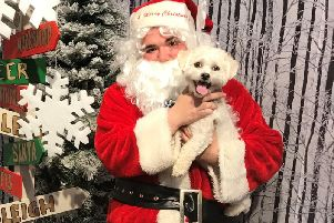 Santa is coming to Nottcutts Victoria Garden Centre for the Santa Paws Grotto event