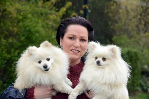 Carol Coxon dog attack law campaign. Dogs from left Georgie and Bentley