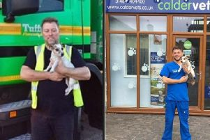 Maisie has now been reunited with her family thanks to delivery driver Chris Wilkins and Calder Vets Brighouse surgery.