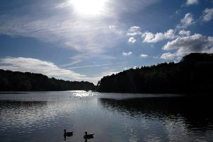 Newmillerdam Country Park.
