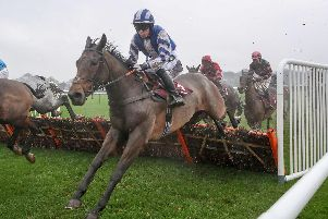 Ballymagroarty Boy running in the first race at Haydock Park last week