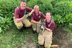 Poppy the Jack Russell is rescued after getting stuck in a drainpipe in Tadcaster