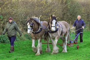 Heath Darley (right) with his wife Liz with their Clydesdales Ted(left) and Bill at Birdforth near Thirsk. Credit: Gary Longbottom