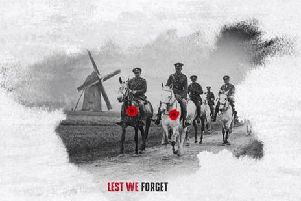 Almost half a million British horses lost their lives during the First World War.