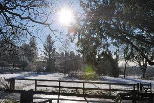 A winter scene at Haigh Woodland Park, as snow falls over Wigan.  Picture by Michelle Adamson